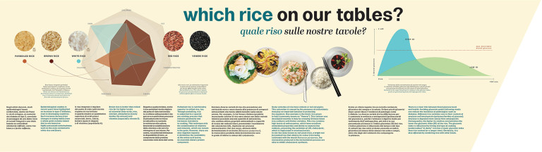 Which rice on our tables? - infographic